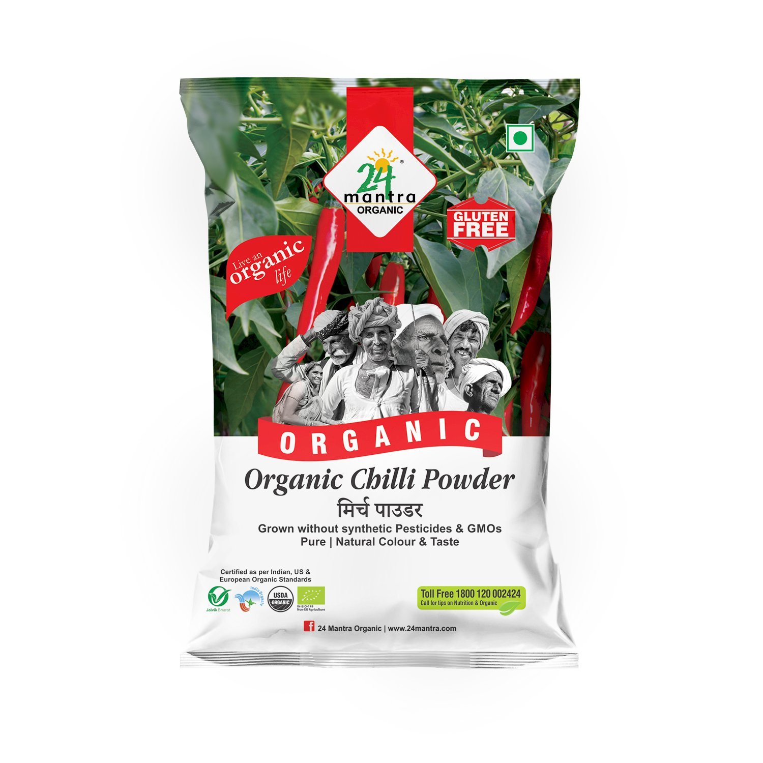 RED STICK CHILLY 100 GMS