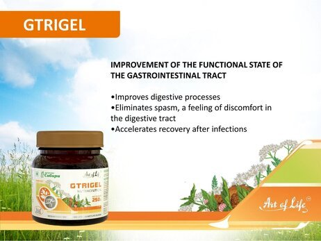 Art Life Gtrigel, 250 g (Improves digestive processes ,Accelerates recovery after infection)