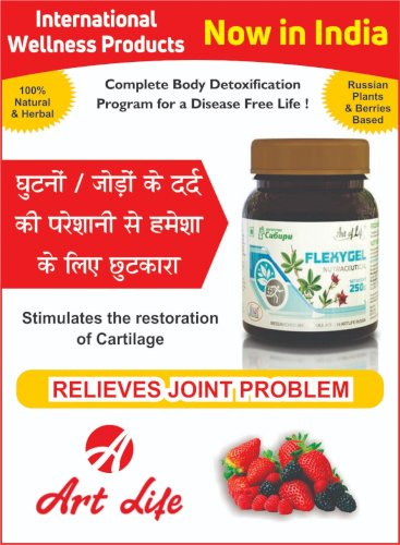 Art Life Flexygel - With Boswellia Extracts, Helpful in Chronic Joints Problems like Rheumatism, Arthritis & Arthrosis (250 grams)